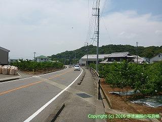 02-023徳島県鳴門市