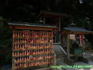02-037徳島県鳴門市