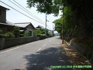 03-009徳島県鳴門市