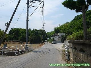 03-011徳島県鳴門市