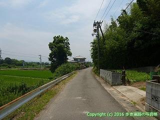 03-015徳島県鳴門市