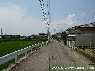 03-021徳島県板野郡板野町