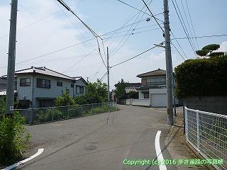 03-023徳島県板野郡板野町