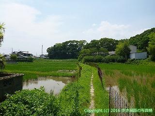 03-036徳島県板野郡板野町