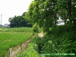 03-037徳島県板野郡板野町