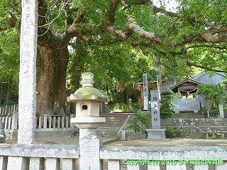 04-012徳島県板野郡板野町