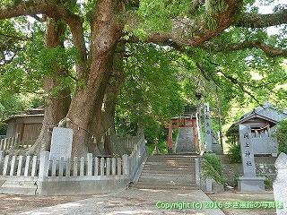04-013徳島県板野郡板野町