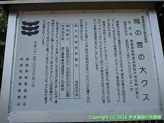04-014徳島県板野郡板野町
