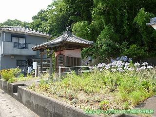 04-018徳島県板野郡板野町
