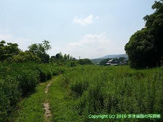 04-055徳島県板野郡板野町