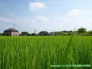 04-067徳島県板野郡板野町
