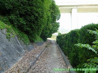 04-072徳島県板野郡板野町徳島自動車道高架下