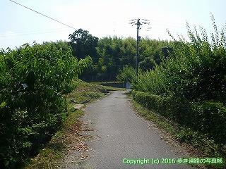 04-077徳島県板野郡板野町