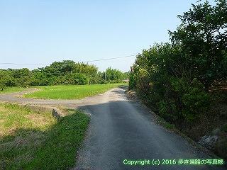 05-008徳島県板野郡板野町