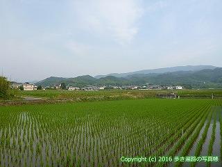 07-003徳島県板野郡上板町