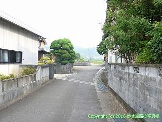 07-005徳島県板野郡上板町
