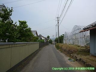 08-029徳島県阿波市