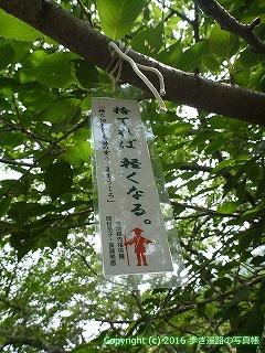 08-049徳島県阿波市