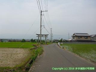 09-008徳島県阿波市