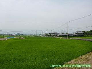 09-009徳島県阿波市