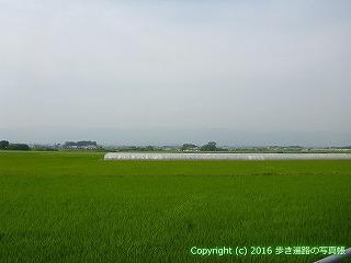 09-011徳島県阿波市