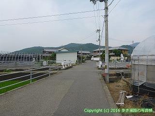 10-009徳島県阿波市