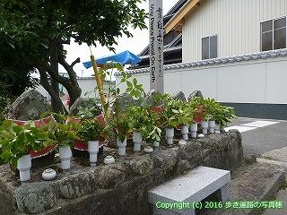 10-015徳島県阿波市