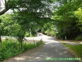 10-036徳島県阿波市