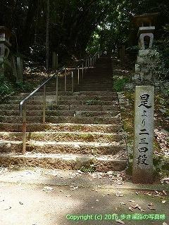 10-045徳島県阿波市
