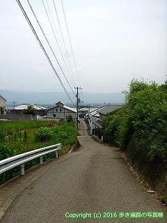 11-004徳島県阿波市