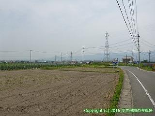 11-010徳島県阿波市