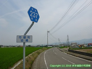 11-011徳島県阿波市