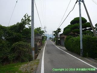 11-031徳島県阿波市吉野川沿いルート分岐点