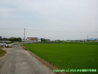 11-038徳島県阿波市