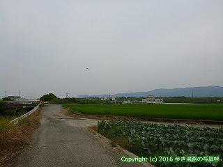 11-040徳島県阿波市