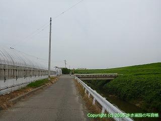 11-049徳島県阿波市