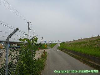 11-060徳島県阿波市