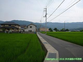 11-088徳島県吉野川市