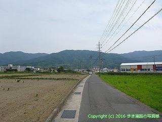 11-090徳島県吉野川市