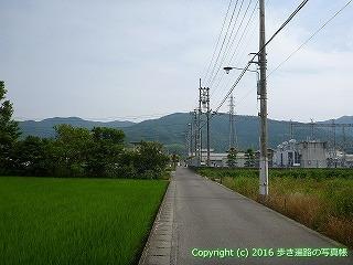 11-092徳島県吉野川市