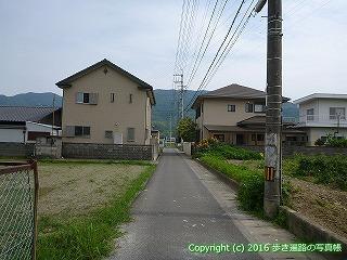11-093徳島県吉野川市