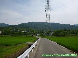 11-096徳島県吉野川市