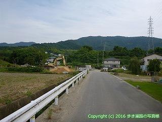 11-097徳島県吉野川市