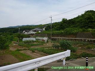 11-098徳島県吉野川市