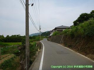 11-099徳島県吉野川市