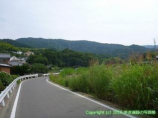 11-100徳島県吉野川市