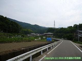 11-101徳島県吉野川市