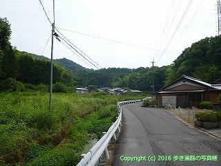 11-102徳島県吉野川市