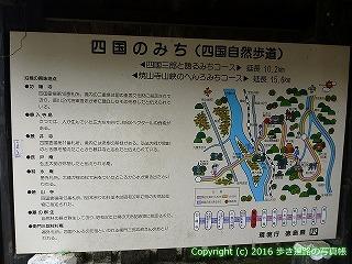 11-106徳島県吉野川市