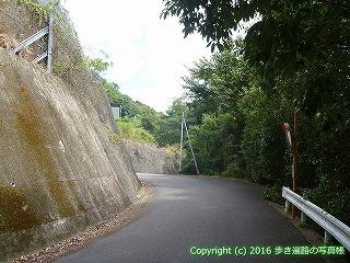11-202徳島県阿波市